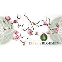 Elise's Bloemen