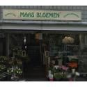 Maas Bloemen