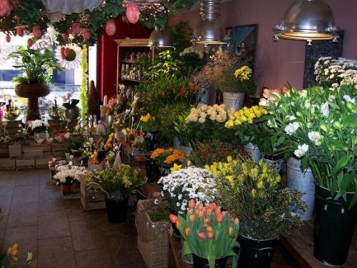tierra verde bvba livraison des fleurs et bouquets kontich antwerpen. Black Bedroom Furniture Sets. Home Design Ideas