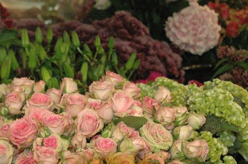 Floralies Garden & Deco