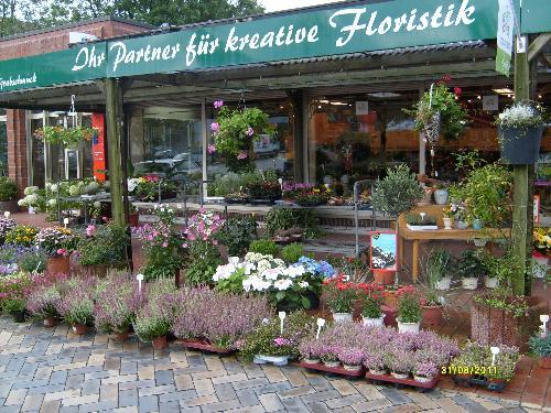 Blumen Buchholz - Besorgt Blumen Und Sträuße In Flensburg ... Schnittblumen Frische Strause Garten