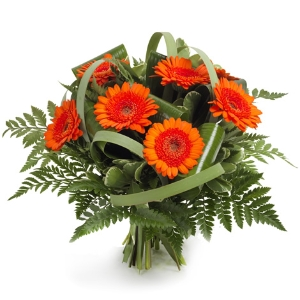 Orange gerbera bouquet