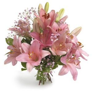 Great pink lilies