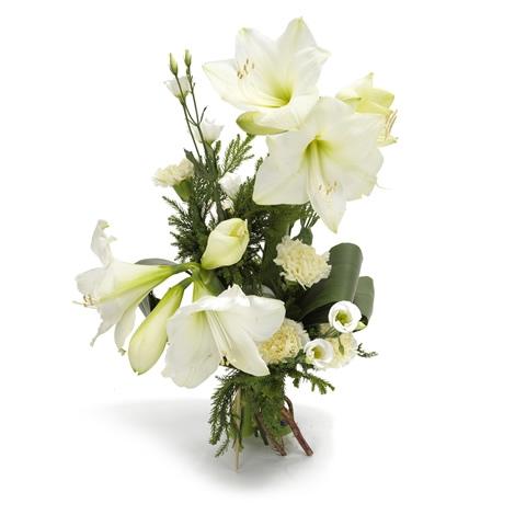 Amaryllis blanc amaryllis blanc commander et livrer par for Fleurs amaryllis bouquet