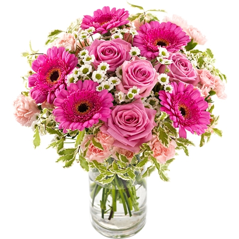 Pink cloud pink cloud delivery in germany regionsflorist pink cloud pink cloud pink cloud mightylinksfo