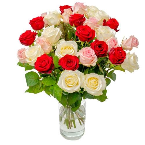 30 Gemischte Rosen Rot / Weiß / Pink