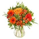 Oranjeboeket Jan