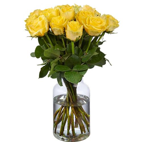 20 Gelbe Rosen (50 cm Premium)