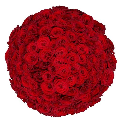 100 rode rozen | Bloemist