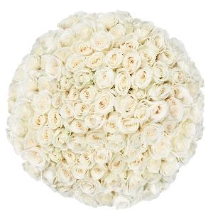 100 witte rozen | Bloemist