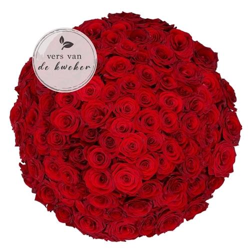 100 rode rozen - Premium Red Naomi